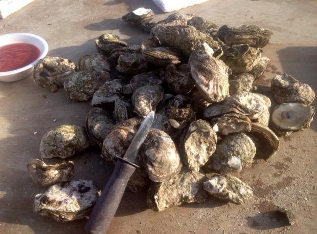 Oyster Roast Charleston